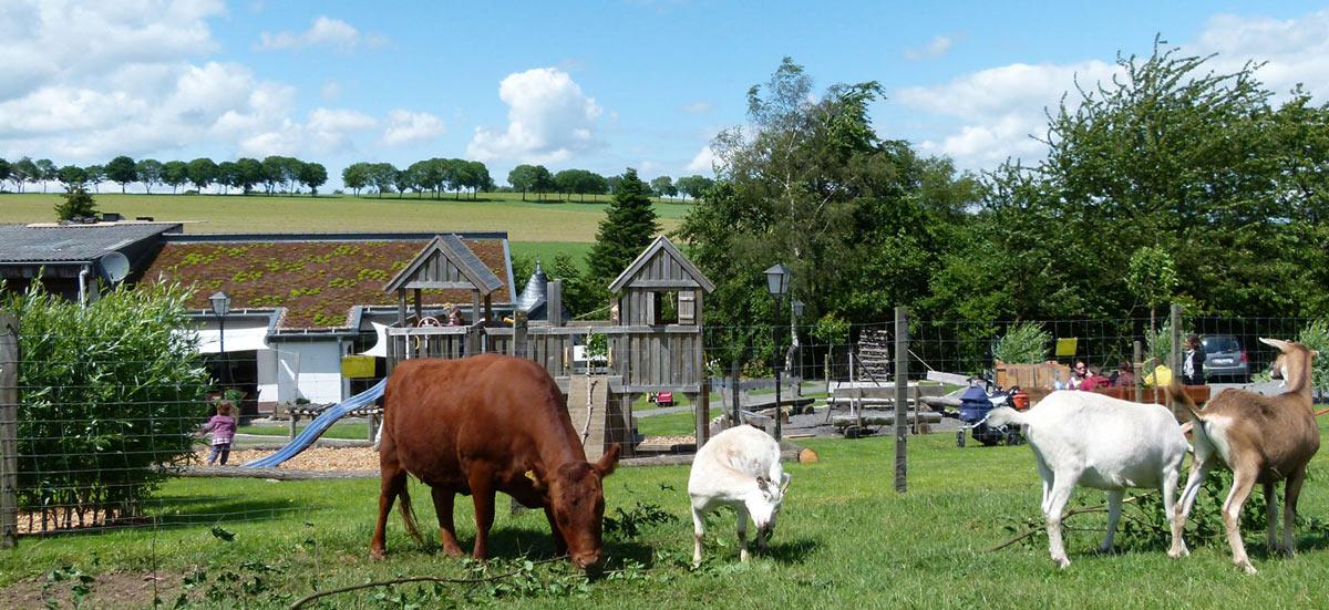 boerderijvakantie en duitsland