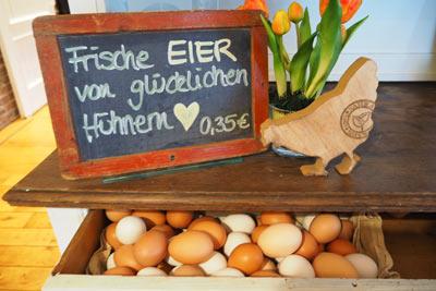 hofladen eier